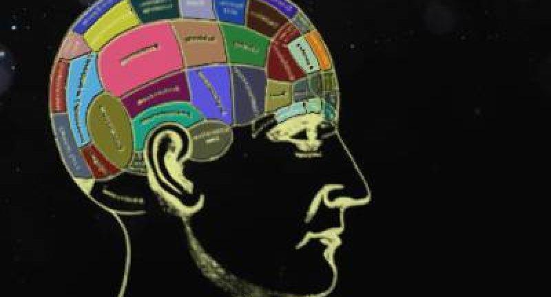 Beyin Renginize Göre Kişilik Özellikleriniz Testi